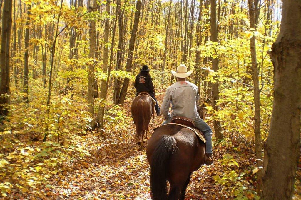 Horseback Riding Santa Fe