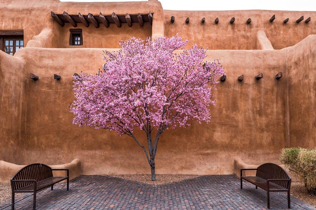 Santa Fe Seasons